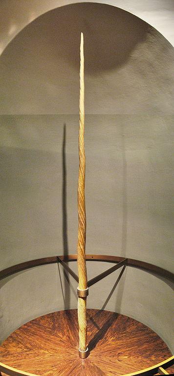 Rzekomy róg jednorożca ubitego przez Pretwicza. Gryffindor, via Wikimedia Commons